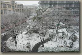 大阪雪景色5.jpg