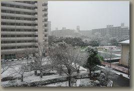 大阪雪景色1.jpg