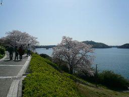 hamanako8.jpg